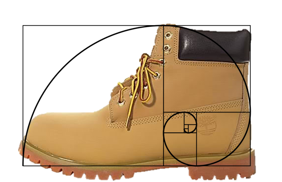 Golden ratio in a shoe